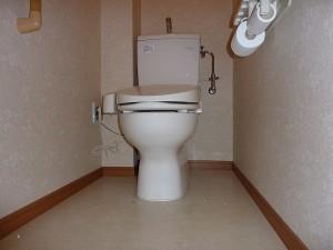 まだまだ活躍してくれるトイレなので。
