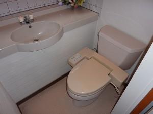 既存のトイレはコーラー社製。